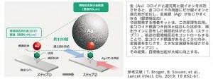 IMUUNO AG COVID-19 Ag 銀増幅技術